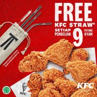 Promo KFC Beli 9 Pcs Fried Chicken Gratis Stainless Steel Straw